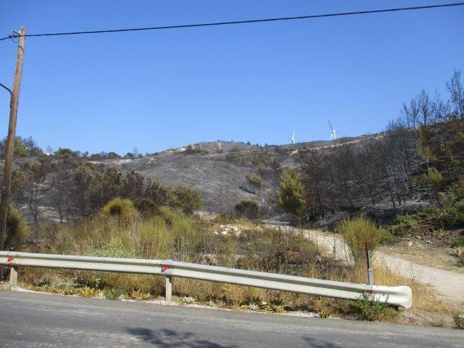 Η επόμενη μέρα της πυρκαγιάς στη Σάμο – Στάχτη 4.000 στρέμματα